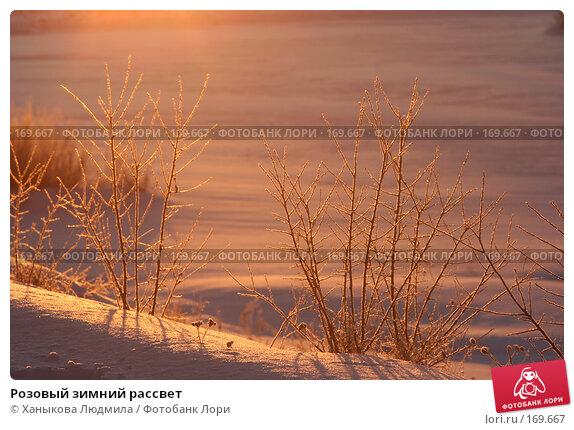 Купить «Розовый зимний рассвет», фото № 169667, снято 2 января 2008 г. (c) Ханыкова Людмила / Фотобанк Лори