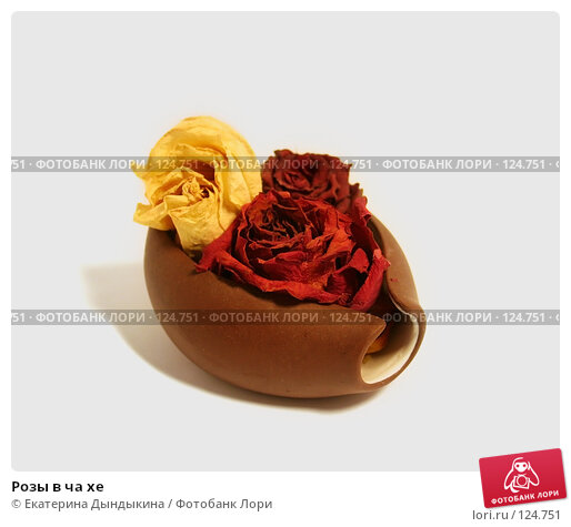 Розы в ча хе, фото № 124751, снято 22 ноября 2007 г. (c) Екатерина Дындыкина / Фотобанк Лори