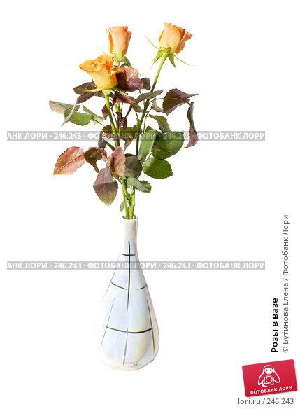 Розы в вазе, фото № 246243, снято 24 марта 2017 г. (c) Бутинова Елена / Фотобанк Лори