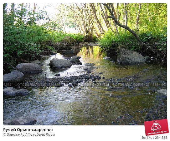 Ручей Орьян-саарен-оя, фото № 234535, снято 11 июня 2006 г. (c) Заноза-Ру / Фотобанк Лори