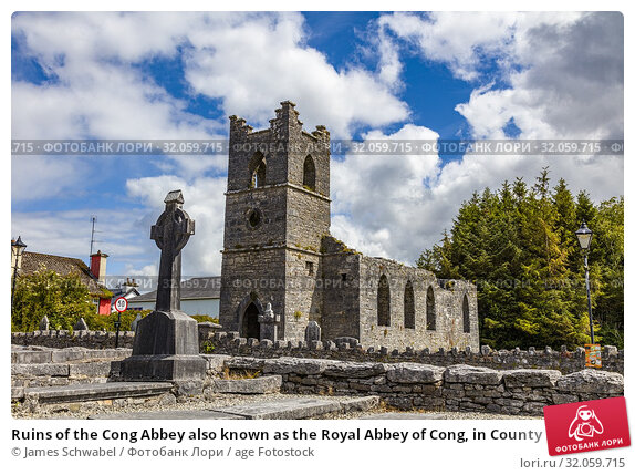 Ruins of the Cong Abbey also known as the Royal Abbey of Cong, in County Mayo Ireland. Стоковое фото, фотограф James Schwabel / age Fotostock / Фотобанк Лори