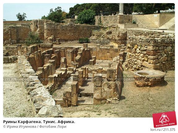 Руины Карфагена. Тунис. Африка., фото № 211375, снято 12 июня 2006 г. (c) Ирина Игумнова / Фотобанк Лори