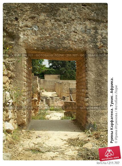 Руины Карфагена. Тунис. Африка., фото № 211707, снято 12 июня 2006 г. (c) Ирина Игумнова / Фотобанк Лори