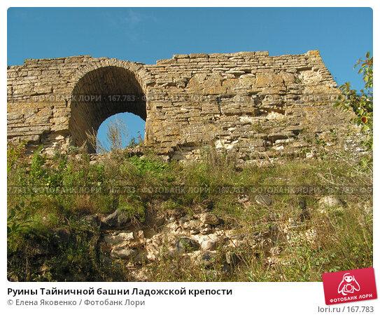 Руины Тайничной башни Ладожской крепости, фото № 167783, снято 9 сентября 2006 г. (c) Елена Яковенко / Фотобанк Лори