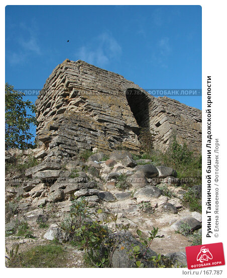 Руины Тайничной башни Ладожской крепости, фото № 167787, снято 9 сентября 2006 г. (c) Елена Яковенко / Фотобанк Лори