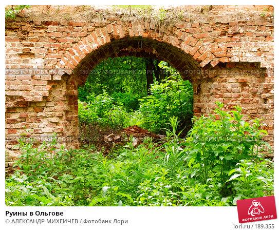 Руины в Ольгове, фото № 189355, снято 17 июня 2006 г. (c) АЛЕКСАНДР МИХЕИЧЕВ / Фотобанк Лори