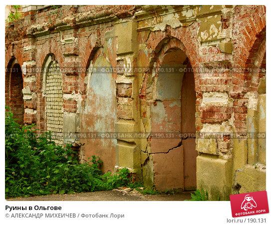 Купить «Руины в Ольгове», фото № 190131, снято 17 июня 2006 г. (c) АЛЕКСАНДР МИХЕИЧЕВ / Фотобанк Лори