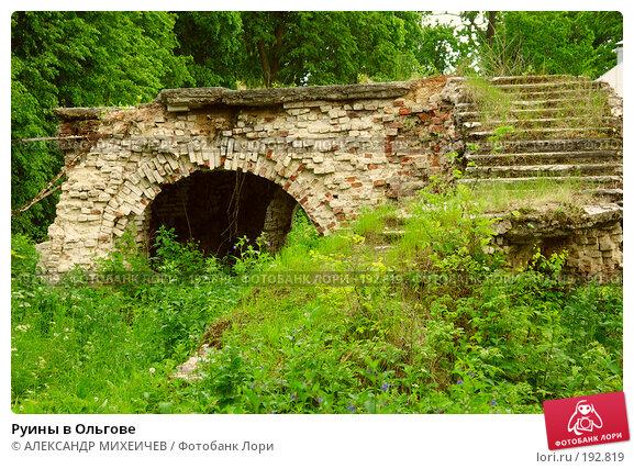 Купить «Руины в Ольгове», фото № 192819, снято 17 июня 2006 г. (c) АЛЕКСАНДР МИХЕИЧЕВ / Фотобанк Лори