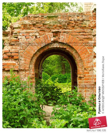 Руины в Ольгово, фото № 190135, снято 17 июня 2006 г. (c) АЛЕКСАНДР МИХЕИЧЕВ / Фотобанк Лори