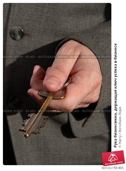 Рука бизнесмена, держащая ключ успеха в бизнесе, фото № 59403, снято 21 июня 2005 г. (c) Harry / Фотобанк Лори