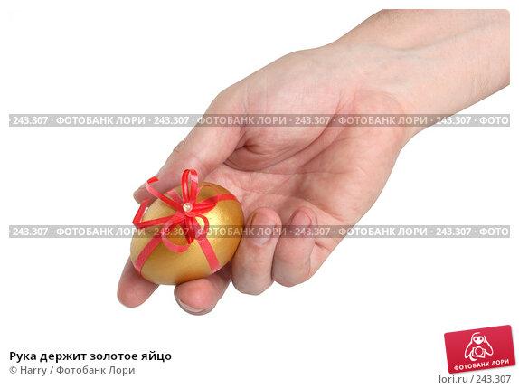 Купить «Рука держит золотое яйцо», фото № 243307, снято 3 октября 2007 г. (c) Harry / Фотобанк Лори