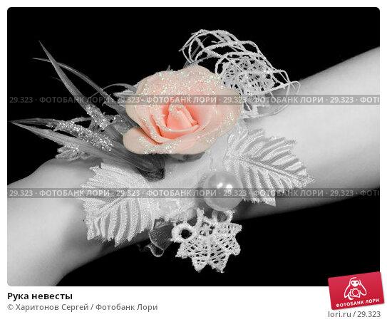 Рука невесты, фото № 29323, снято 27 марта 2007 г. (c) Харитонов Сергей / Фотобанк Лори