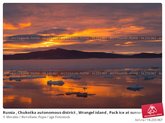 Купить «Russia , Chukotka autonomous district , Wrangel island , Pack ice at sunset.», фото № 14233967, снято 13 сентября 2019 г. (c) age Fotostock / Фотобанк Лори