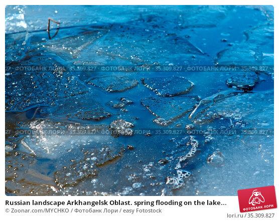 Russian landscape Arkhangelsk Oblast. spring flooding on the lake... Стоковое фото, фотограф Zoonar.com/MYCHKO / easy Fotostock / Фотобанк Лори