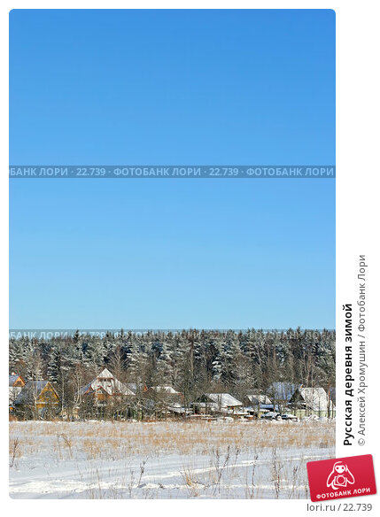 Русская деревня зимой, фото № 22739, снято 11 февраля 2007 г. (c) Алексей Хромушин / Фотобанк Лори