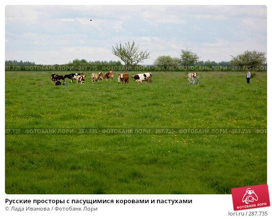 Русские просторы с пасущимися коровами и пастухами, фото № 287735, снято 9 мая 2008 г. (c) Лада Иванова / Фотобанк Лори