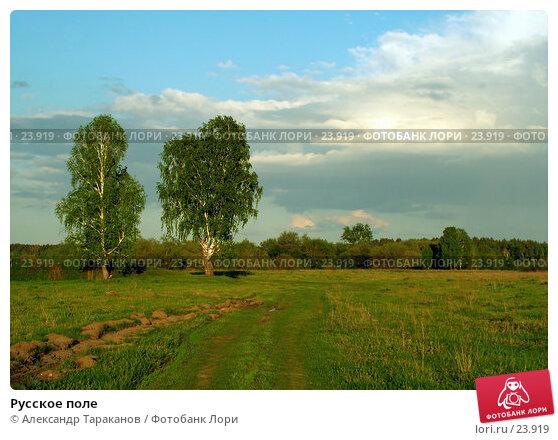 Русское поле, эксклюзивное фото № 23919, снято 21 августа 2017 г. (c) Александр Тараканов / Фотобанк Лори