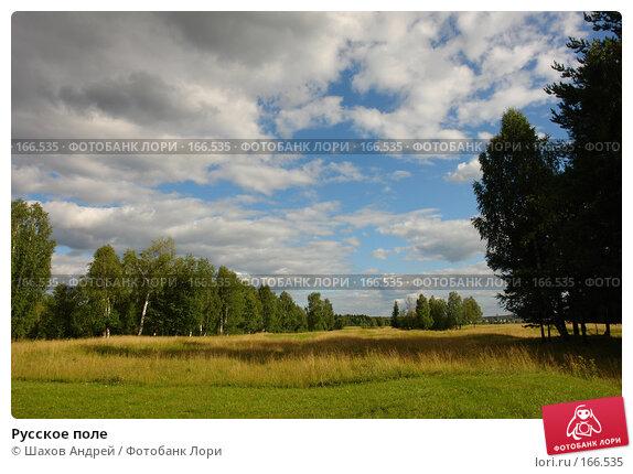 Русское поле, фото № 166535, снято 5 августа 2006 г. (c) Шахов Андрей / Фотобанк Лори