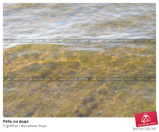 Купить «Рябь на воде», фото № 235147, снято 22 апреля 2018 г. (c) griFFon / Фотобанк Лори