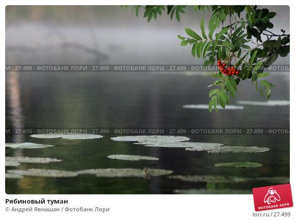 Рябиновый туман, фото № 27499, снято 18 августа 2005 г. (c) Андрей Явнашан / Фотобанк Лори