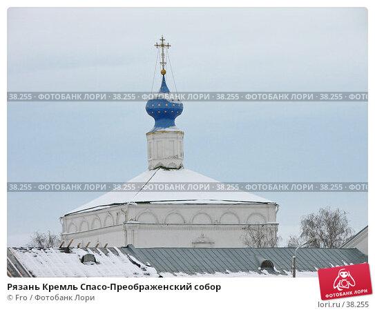 Рязань Кремль Спасо-Преображенский собор, фото № 38255, снято 16 ноября 2006 г. (c) Fro / Фотобанк Лори