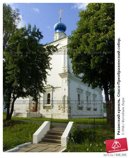 Рязанский кремль. Спасо-Преображенский собор., фото № 308395, снято 30 мая 2008 г. (c) УНА / Фотобанк Лори