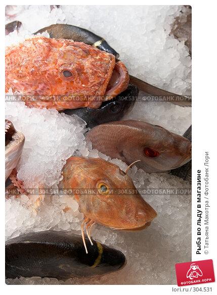Рыба во льду в магазине, фото № 304531, снято 17 мая 2008 г. (c) Татьяна Макотра / Фотобанк Лори
