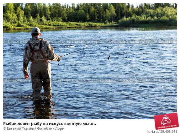 Купить «Рыбак ловит рыбу на искусственную мышь», фото № 29403951, снято 15 июля 2017 г. (c) Евгений Ткачёв / Фотобанк Лори