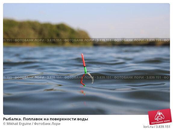поплавки водяные