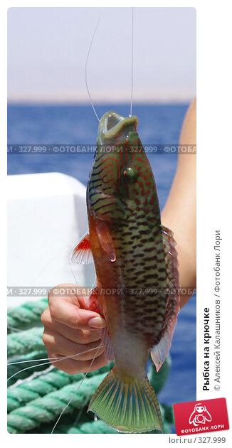 Рыбка на крючке, фото № 327999, снято 10 июня 2008 г. (c) Алексей Калашников / Фотобанк Лори