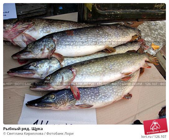 Купить «Рыбный ряд. Щука», фото № 126107, снято 25 ноября 2007 г. (c) Светлана Кириллова / Фотобанк Лори