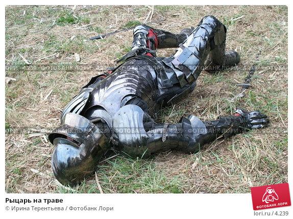 Рыцарь на траве, эксклюзивное фото № 4239, снято 8 мая 2006 г. (c) Ирина Терентьева / Фотобанк Лори
