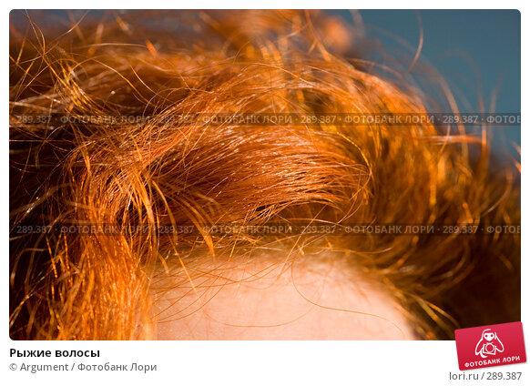 Рыжие волосы, фото № 289387, снято 24 апреля 2008 г. (c) Argument / Фотобанк Лори