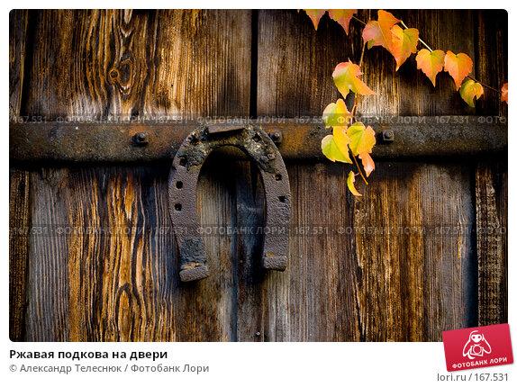 Ржавая подкова на двери, фото № 167531, снято 28 октября 2007 г. (c) Александр Телеснюк / Фотобанк Лори