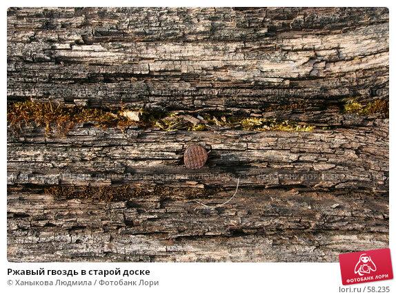 Ржавый гвоздь в старой доске, фото № 58235, снято 21 апреля 2007 г. (c) Ханыкова Людмила / Фотобанк Лори