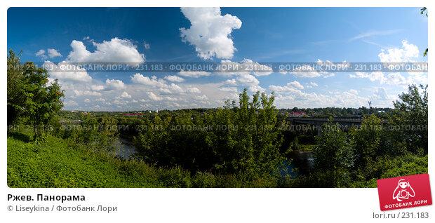 Ржев. Панорама, фото № 231183, снято 29 марта 2017 г. (c) Liseykina / Фотобанк Лори