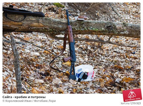 Сайга - крабин и патроны, фото № 219923, снято 23 февраля 2008 г. (c) Королевский Иван / Фотобанк Лори