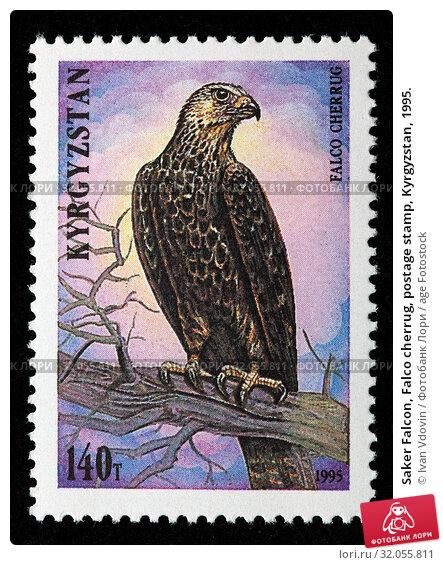 Saker Falcon, Falco cherrug, postage stamp, Kyrgyzstan, 1995. (2010 год). Редакционное фото, фотограф Ivan Vdovin / age Fotostock / Фотобанк Лори