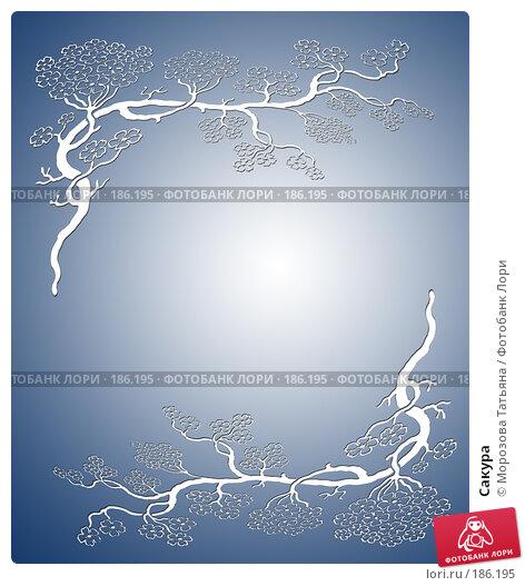 Купить «Сакура», иллюстрация № 186195 (c) Морозова Татьяна / Фотобанк Лори