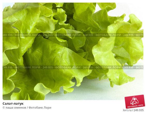 Салат-латук, фото № 249935, снято 29 ноября 2007 г. (c) паша семенов / Фотобанк Лори