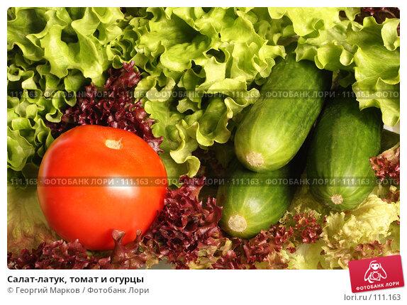 Салат-латук, томат и огурцы, фото № 111163, снято 16 октября 2007 г. (c) Георгий Марков / Фотобанк Лори
