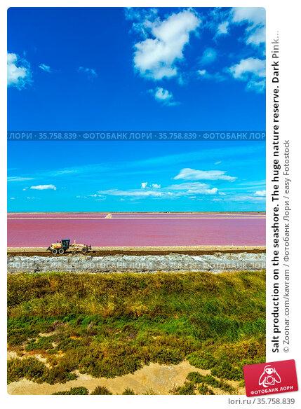 Salt production on the seashore. The huge nature reserve. Dark Pink... Стоковое фото, фотограф Zoonar.com/kavram / easy Fotostock / Фотобанк Лори