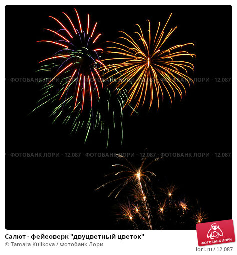 """Купить «Салют - фейеоверк """"двуцветный цветок""""», фото № 12087, снято 4 ноября 2006 г. (c) Tamara Kulikova / Фотобанк Лори"""