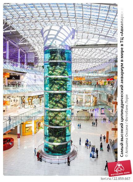 Купить «Самый высокий цилиндрический аквариум в мире в ТЦ «Авиапарк» в  Москве» b47b73841f4