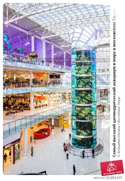 Купить «Самый высокий цилиндрический аквариум в мире в московском ТЦ « Авиапарк»», 8077bcbda29