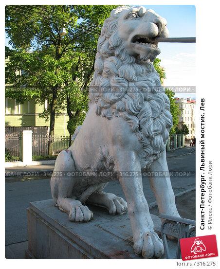 Санкт-Петербург. Львиный мостик. Лев, фото № 316275, снято 30 мая 2008 г. (c) Морковкин Терентий / Фотобанк Лори