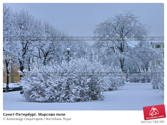 Купить «Санкт-Петербург. Марсово поле», фото № 163191, снято 16 ноября 2007 г. (c) Александр Секретарев / Фотобанк Лори