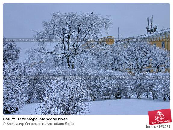 Санкт-Петербург. Марсово поле, фото № 163231, снято 16 ноября 2007 г. (c) Александр Секретарев / Фотобанк Лори