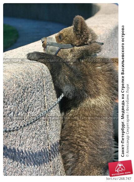 Купить «Санкт-Петербург. Медведь на Стрелке Васильевского острова», фото № 268747, снято 28 июня 2005 г. (c) Александр Секретарев / Фотобанк Лори