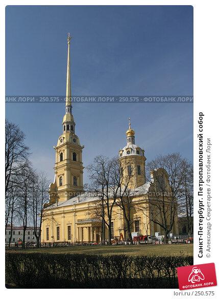 Санкт-Петербург. Петропавловский собор, фото № 250575, снято 5 апреля 2008 г. (c) Александр Секретарев / Фотобанк Лори